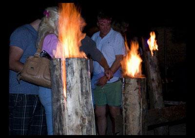 Fire_logs